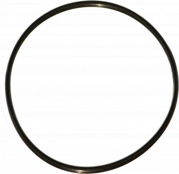 O-Ring for Aqua Bon Water Filter Housing