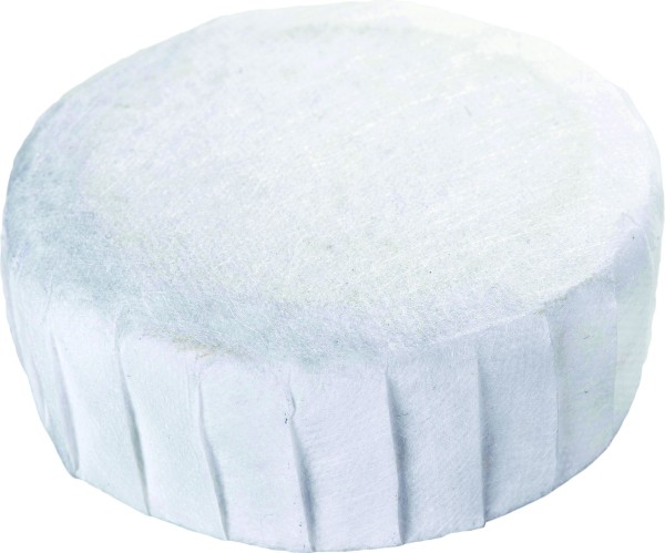 Replacement Tablet for Dehumidifier 450 g